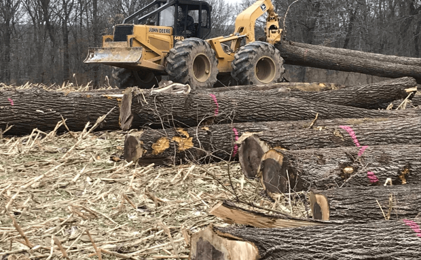 Logging Process