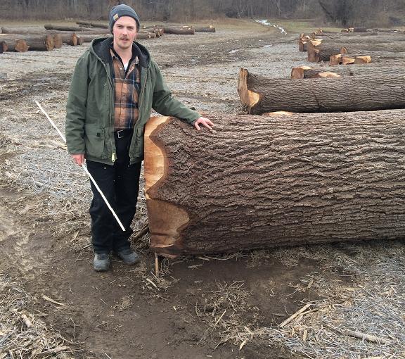 Weston Edwards Standing Next to Cut Tree