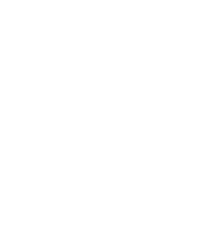 Walnut Timber Buyers