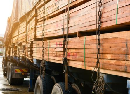 Timber Buyers Illinois - Importer Truck Hauling Lumber