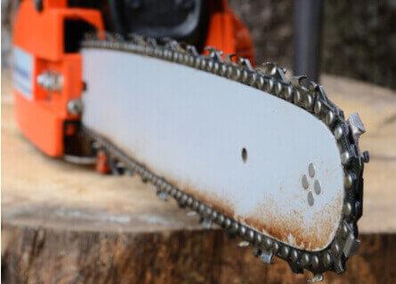 Chainsaw Resting on Tree Stump - Illinois Loggers - Walnut Timber Buyers