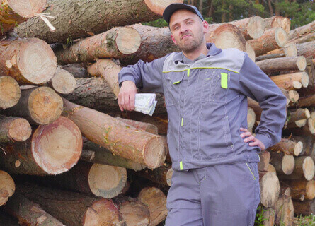 Loggers Illinois, loggers, logging, logging company, logging services, logger, logger in front of logs