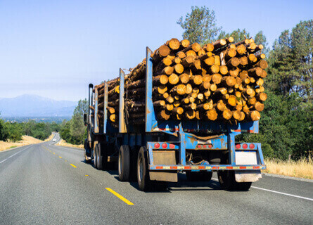 Logging Operations Illinois, logging operations, logging, loggers, logging company , logging services, transporting logs, transporting timber