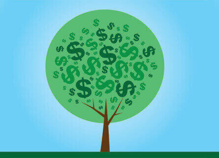 Sell Trees for Lumber Illinois, sell trees for lumber, sell trees, sell lumber, sell wood, sell logs, sell timber, logging company, logging services, money on trees