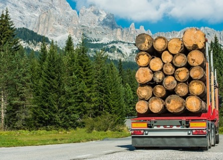 A logging contractor in Illinois transporting logs