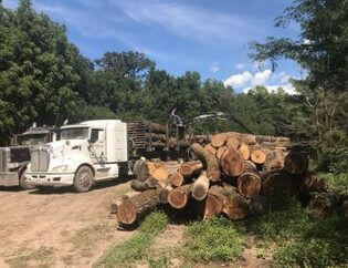 Log Truck Picking Up Logs