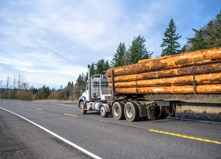 A truck transporting logs during Logging in Rock Island IL