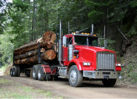 Loggers in Davenport IA transporting logs via a truck