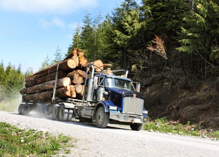 A truck on its way to Sell Timber in Rock Island IL
