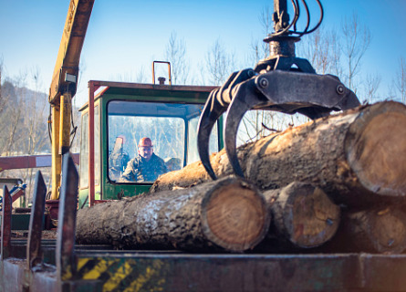 Loggers using equipment to move logs after cutting Standing Timber in Missouri