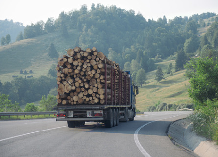 Truck transporting previously cut Standing Timber in Missouri