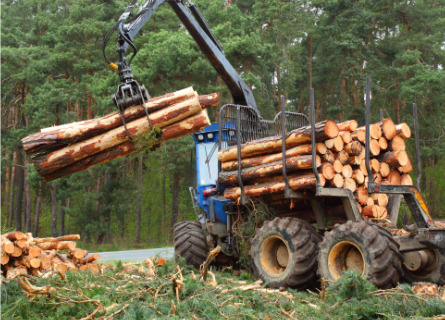 Loggers in MO moving logs with logging equipment