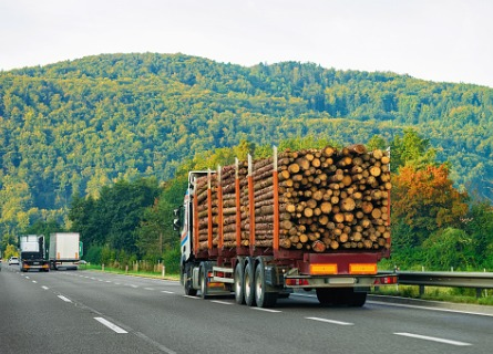 Timber Buyers in Fulton County IL transporting cut wood