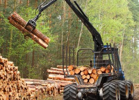 Logging Contractor Missouri