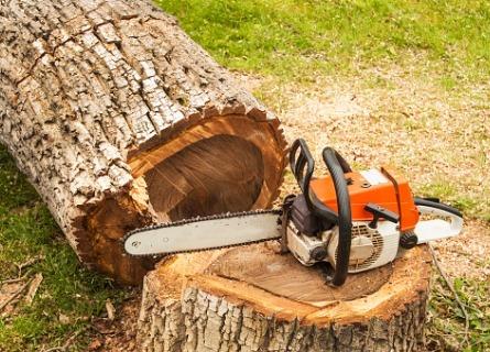 Logging Companies Adams County IL
