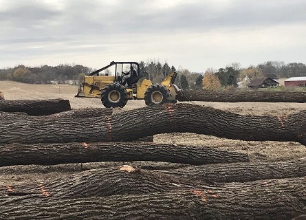 Logging Contractors working in Knox County IL