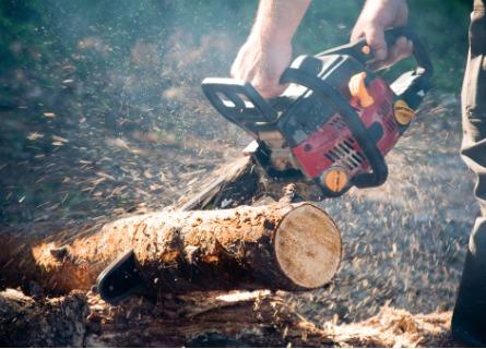 Logging Contractors Morgan County IL