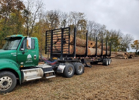 Licensed Timer Buyers truck carrying logs in Cass County IL