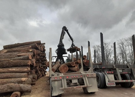 Logging Contractors machinery in Knox County IL